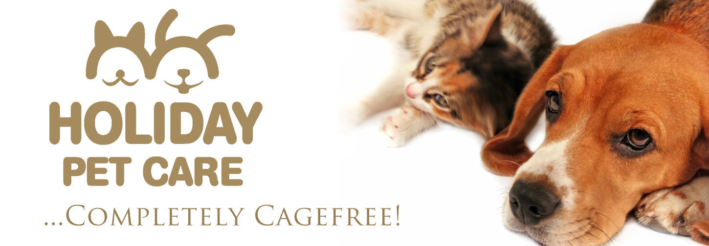 Holiday Pet Care Dog & Cat Logo... offering dog daycare, cagefree doggie boarding / dog hotel, (not a kennel) dog walking, pet / cat sitting,  in  Thornhill, Richmond Hill, Toronto, Ontario, Canada
